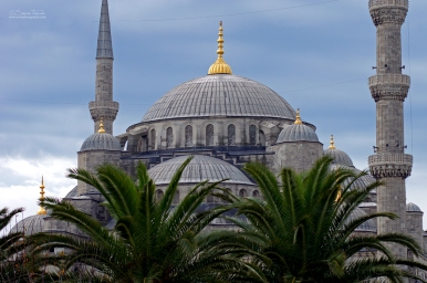 The mosque is popularly known as the Blue Mosque for the blue tiles adorning the walls of its interior.